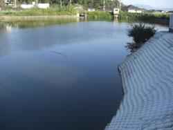 2年前に改修されたため池